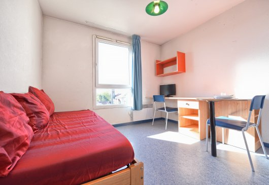 Quiet flat in Villeurbanne