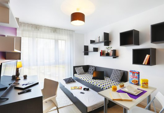 Furnished studio near RER D /Metro