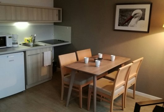 Fully equipped apartments for rent