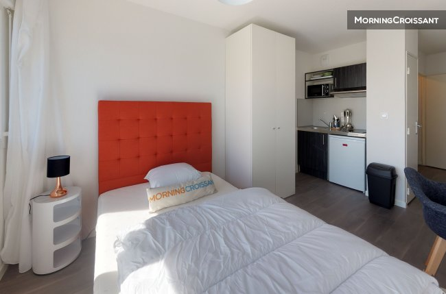 Furnished apartment in Villeurbanne