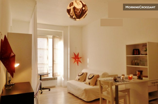 Furnished studio for rent Lyon 8