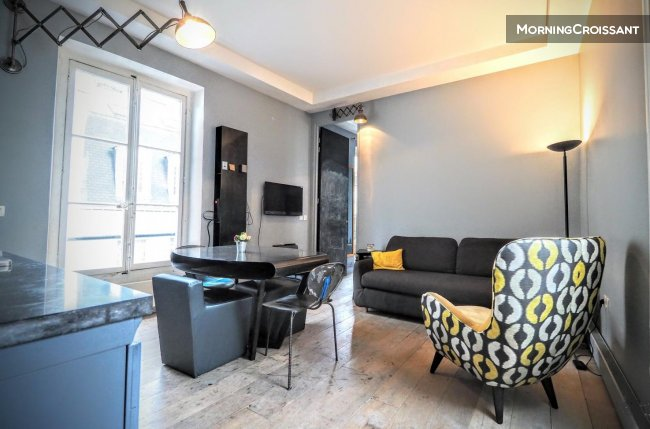 Beautiful  flat in Marais district