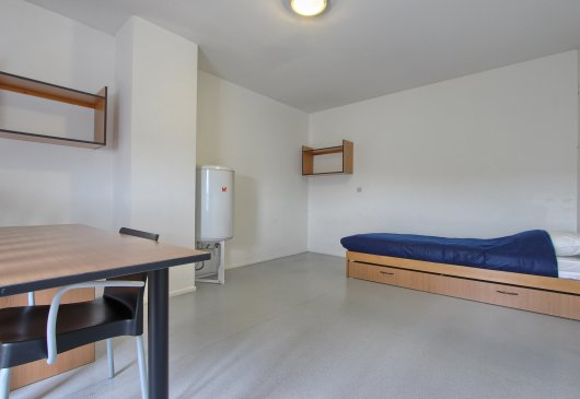1BR apartment, Moulin district